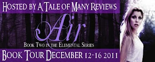 Air+book+tour+button [Air Blog Tour] Guest Post: Shauna Granger, author of Air