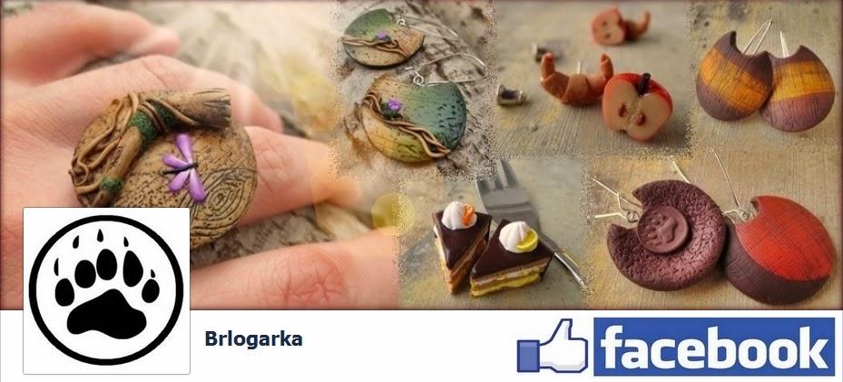 https://www.facebook.com/brlogarka