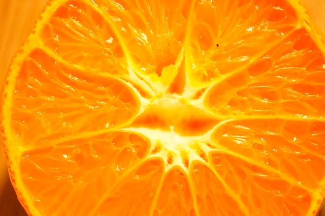 copyright free picture orange