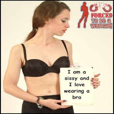 I am a sissy and I love wearing a bra