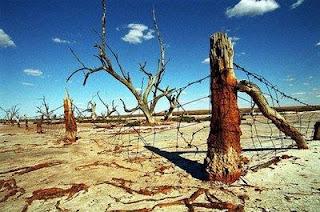 5 Kebiasaan Sepele Manusia Yang Dapat Menghancurkan Bumi