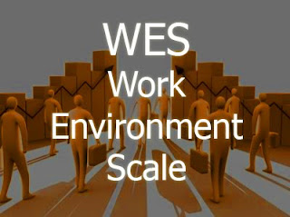 Escala de Clima Social Laboral - Work Environment Scale -WES