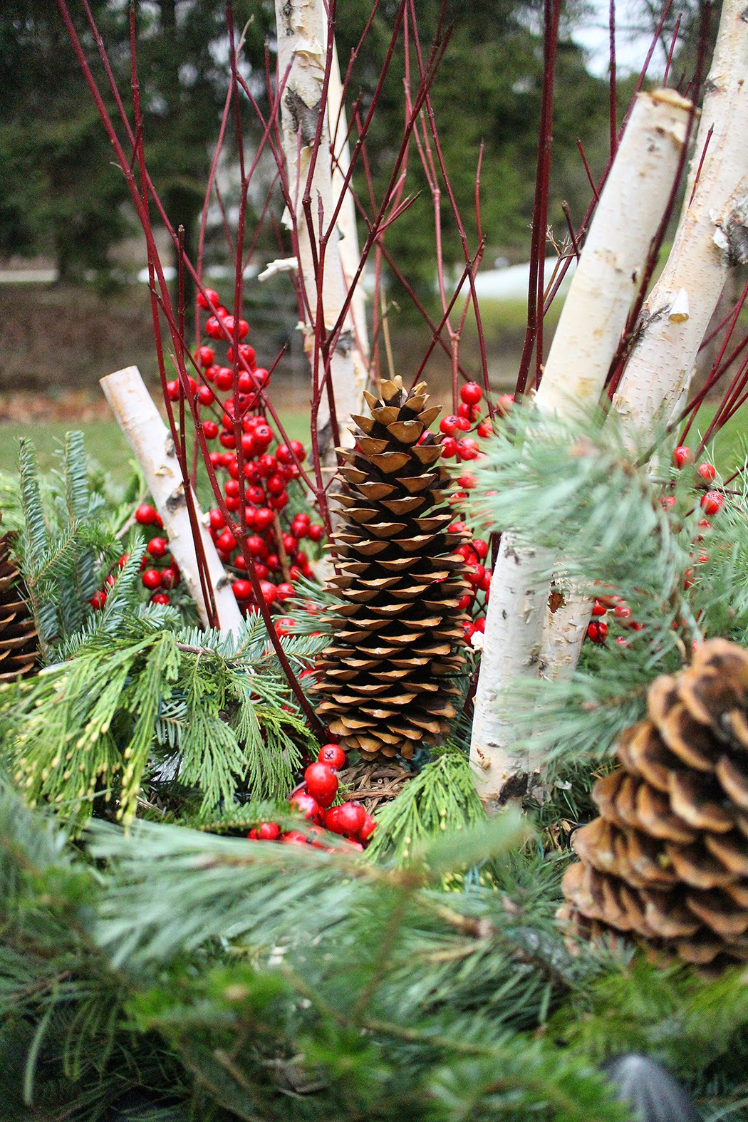 pine cone, birch, berry, dogwood container detail -- The Impatient Gardener