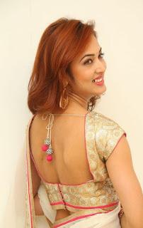 Actress Vidisha Srivastava Latest Pictures in Saree at Harinath Wedding Reception  4.jpg