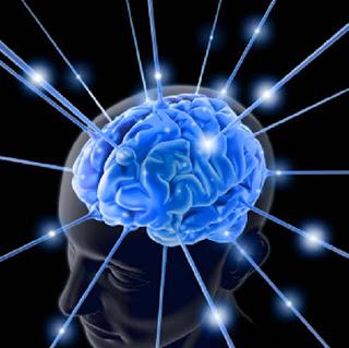 Bagaimana Cara Meningkatkan Kinerja Otak?