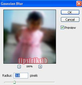 tutorial mengedit foto : cara membuat efek blur pada photo dengan