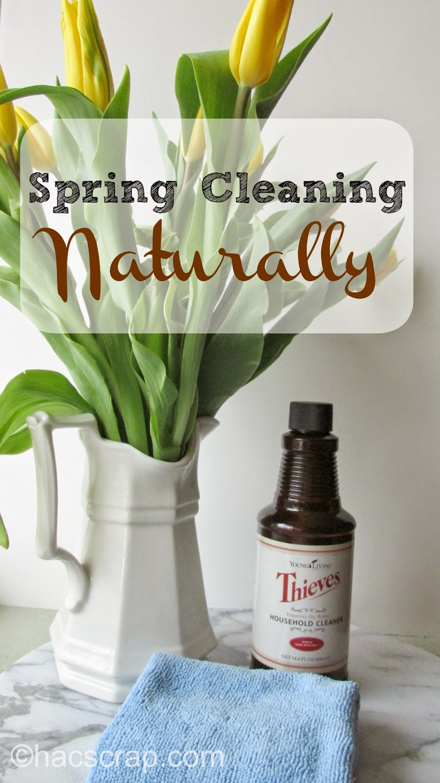 Natural Spring Cleaning Tips and Tricks