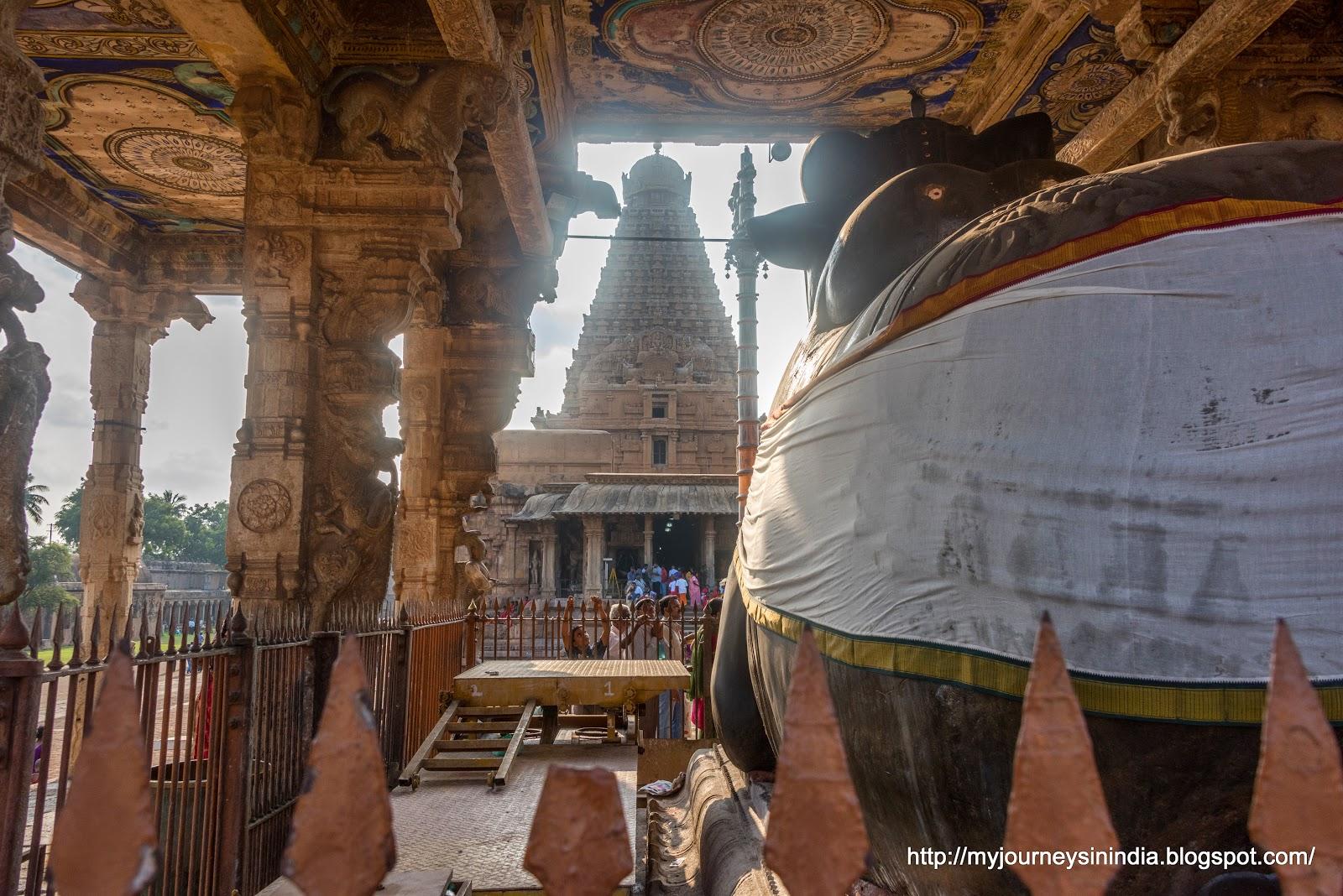 Thanjavur Brihadeeswarar Temple Big Nandi View