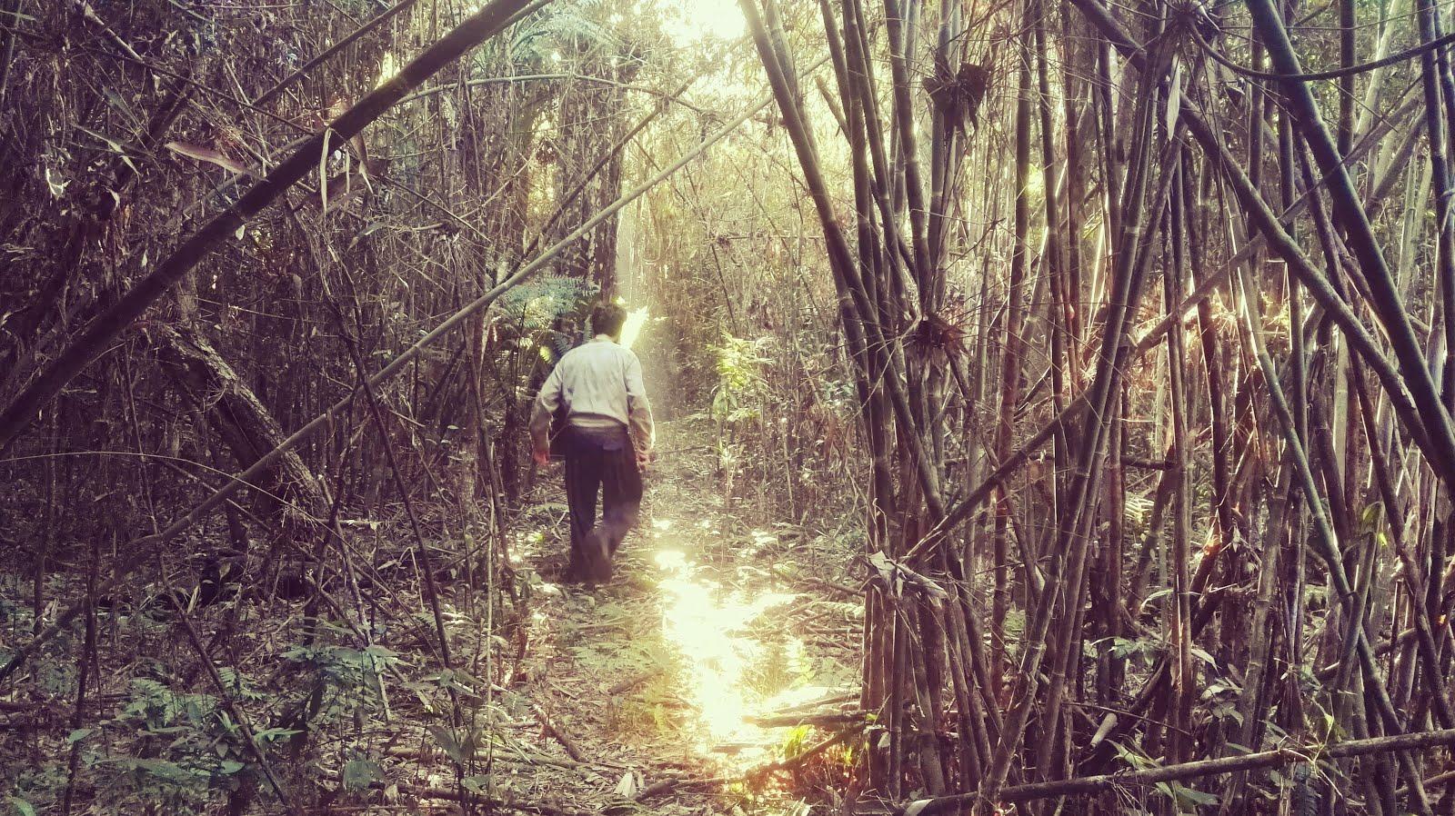 La Perla de la Selva Ecolodge