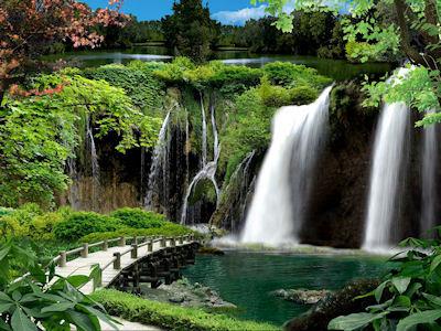 Arroyo que cruza el bosque con hermosas cascadas - Paisajes naturales - Rio de aguas claras