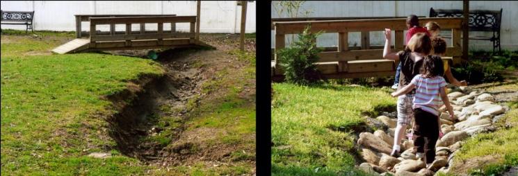 Как осушить болотистый участок от воды