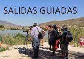 Otra forma de conocer el Valle de Ricote: