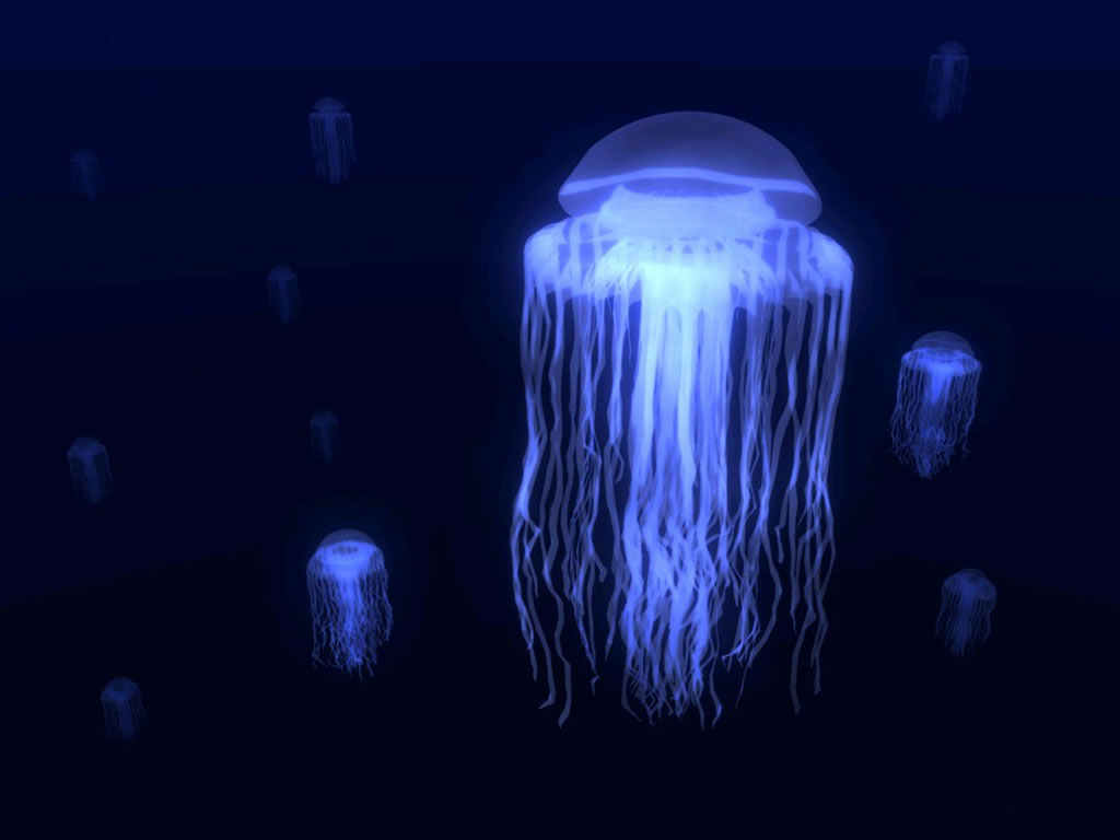 Runningshield jelly fish for Fish in jellyfish