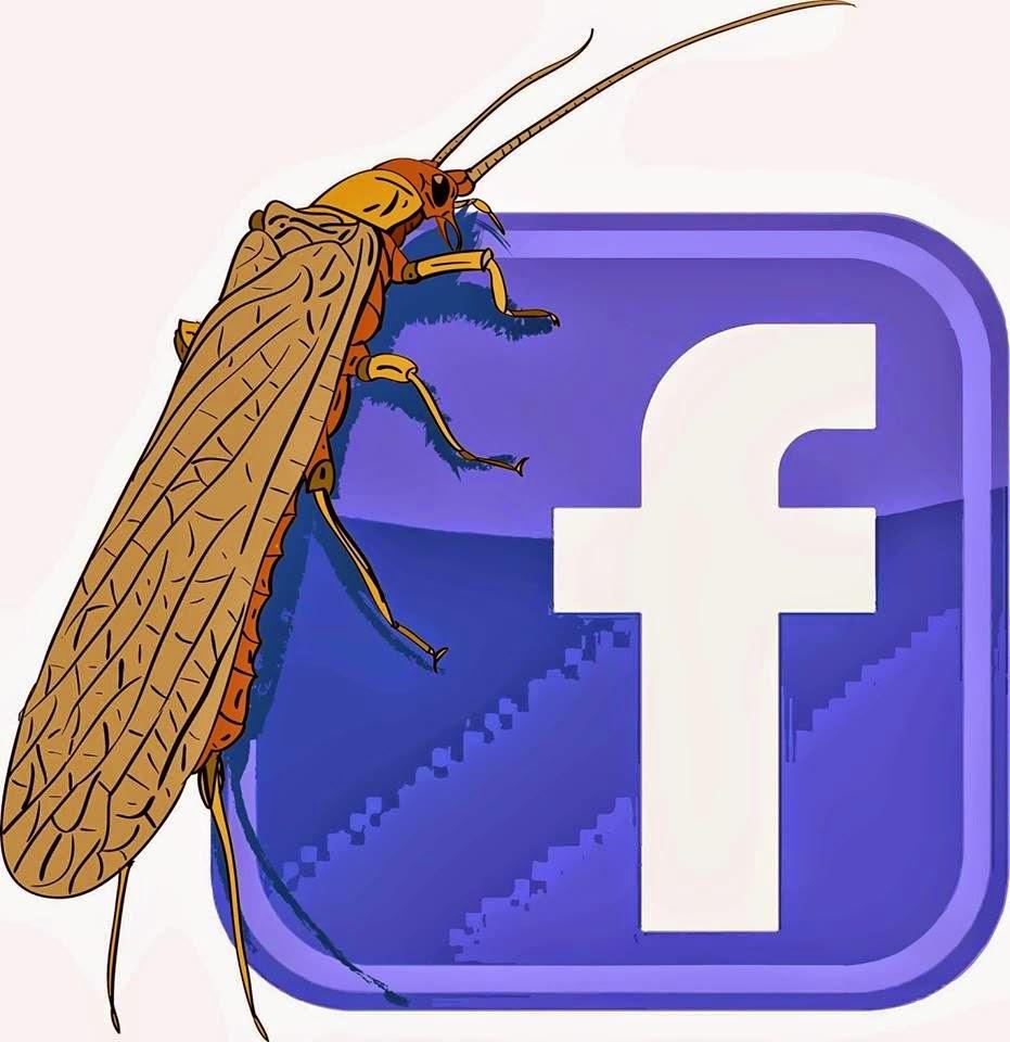 my facebook - mon facebook