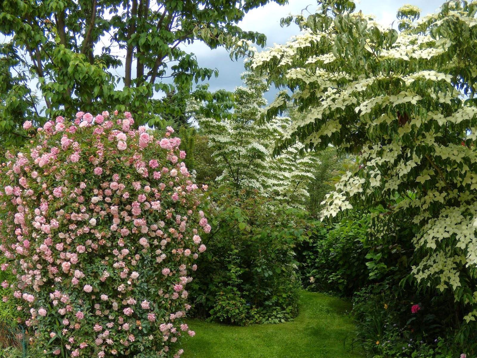 Le blog de parcs et jardins de l 39 oise ouverture for Jardin 76