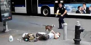 Policia matando cachorro