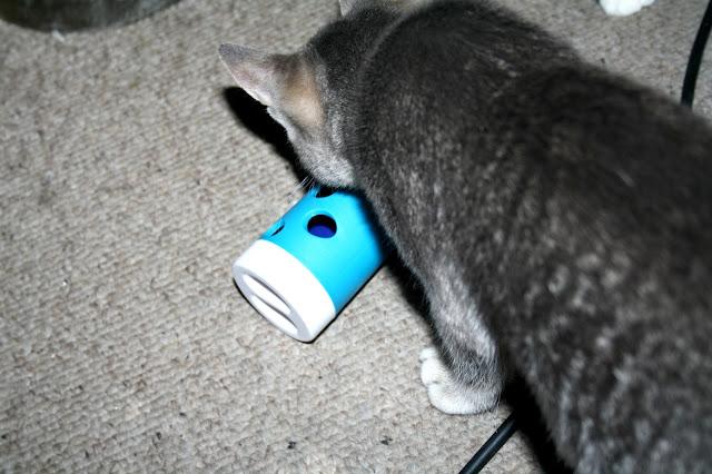 Purrfect Box for Cats - November Box