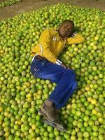 n asleep in lemon