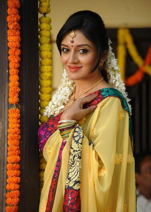vimalaraman saree hq nowatermark glamour  images