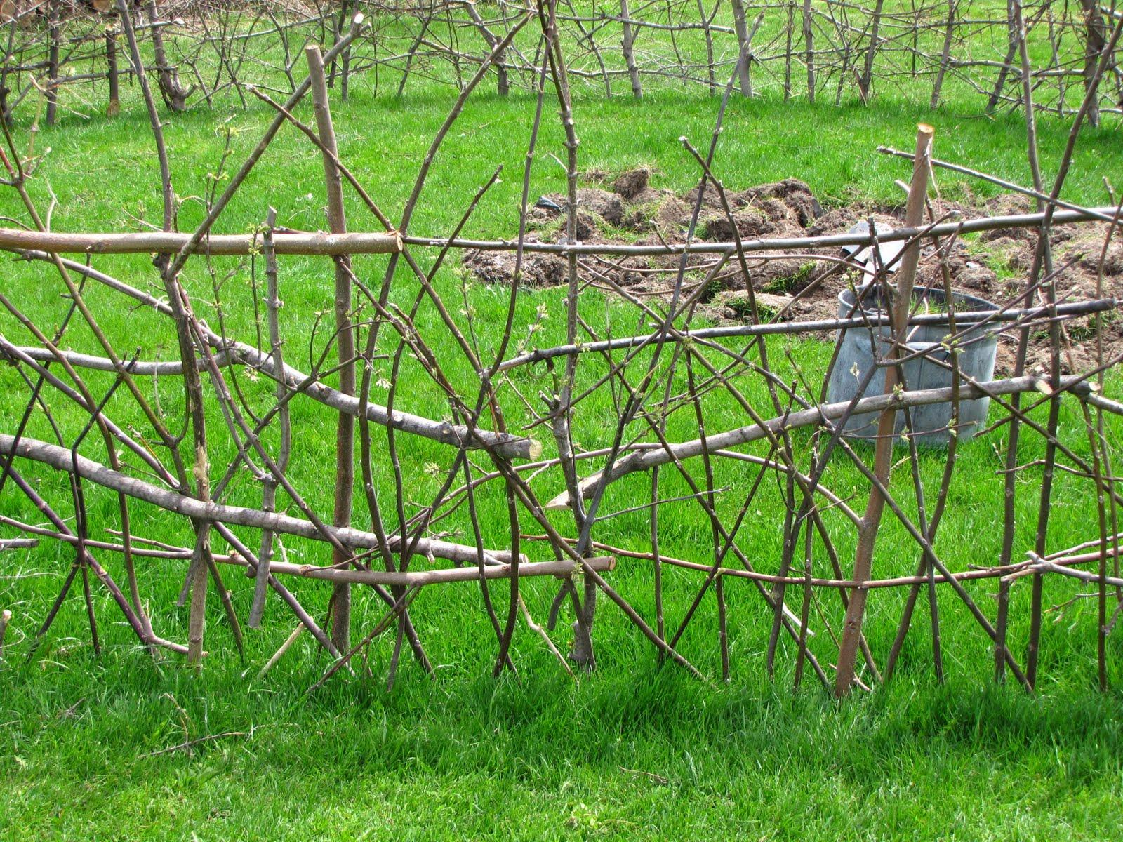 One Tin Drum Garden Fence Complete