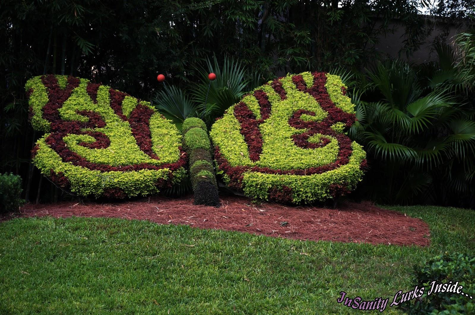 Park Review  Busch Gardens Tampa