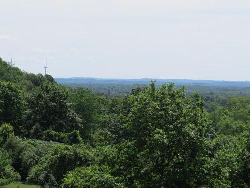 Mason County vista
