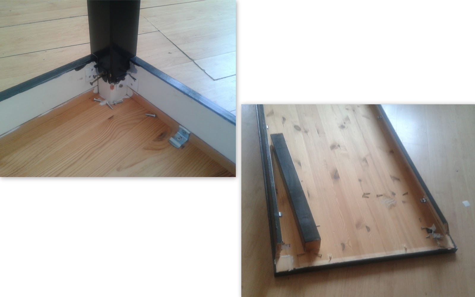 Collie collie: tafel in de prak....