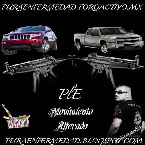 Nueva Presentacion De Puraenfermedad 2011 PRESENTACION-1