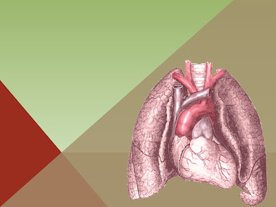 animated pulmonology medical powerpoint template free