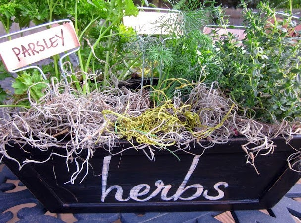 Mother's Day DIY herb garden www.homeroad.net