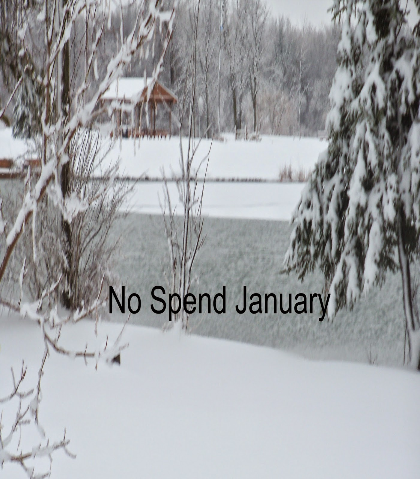 No Spend January