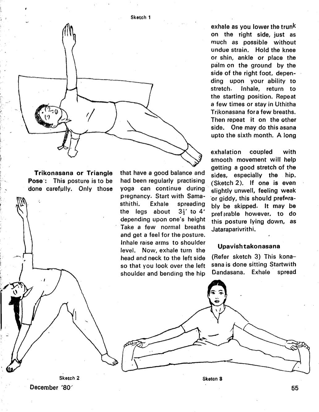 Krishnamacharyas Early Mysore Vinyasa Krama Yoga At Home