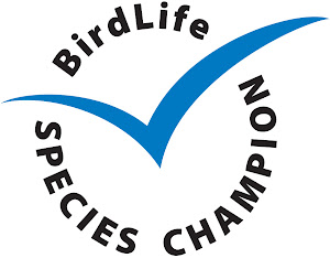 Wader Quest is now a Birdlife Species Champions.