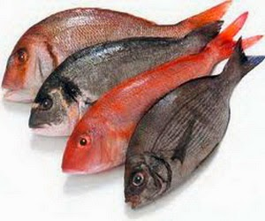 Tips Menghilangkan Bau Tanah Pada Ikan