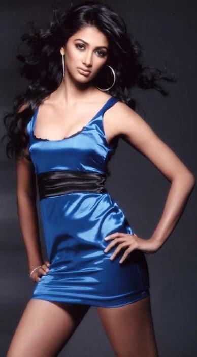 pooja hedre actress pics