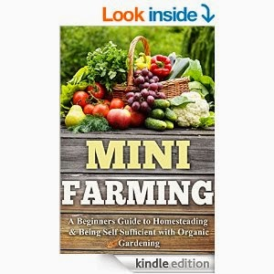 Beginner Homesteader