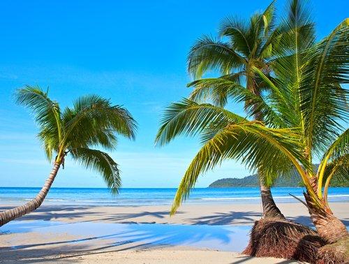 The Americano Beach Resort