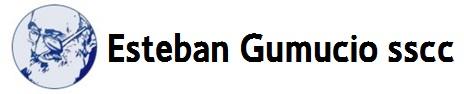 Web Esteban Gumucio
