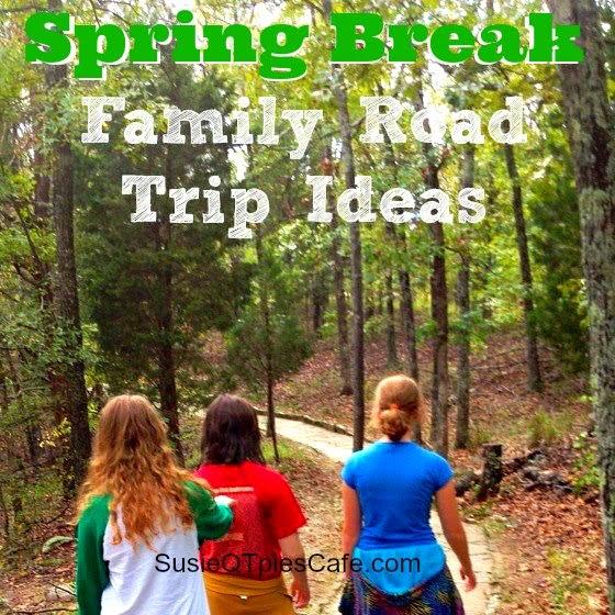 Family Car Ideas