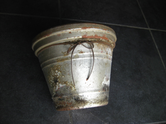 star donica, old pot