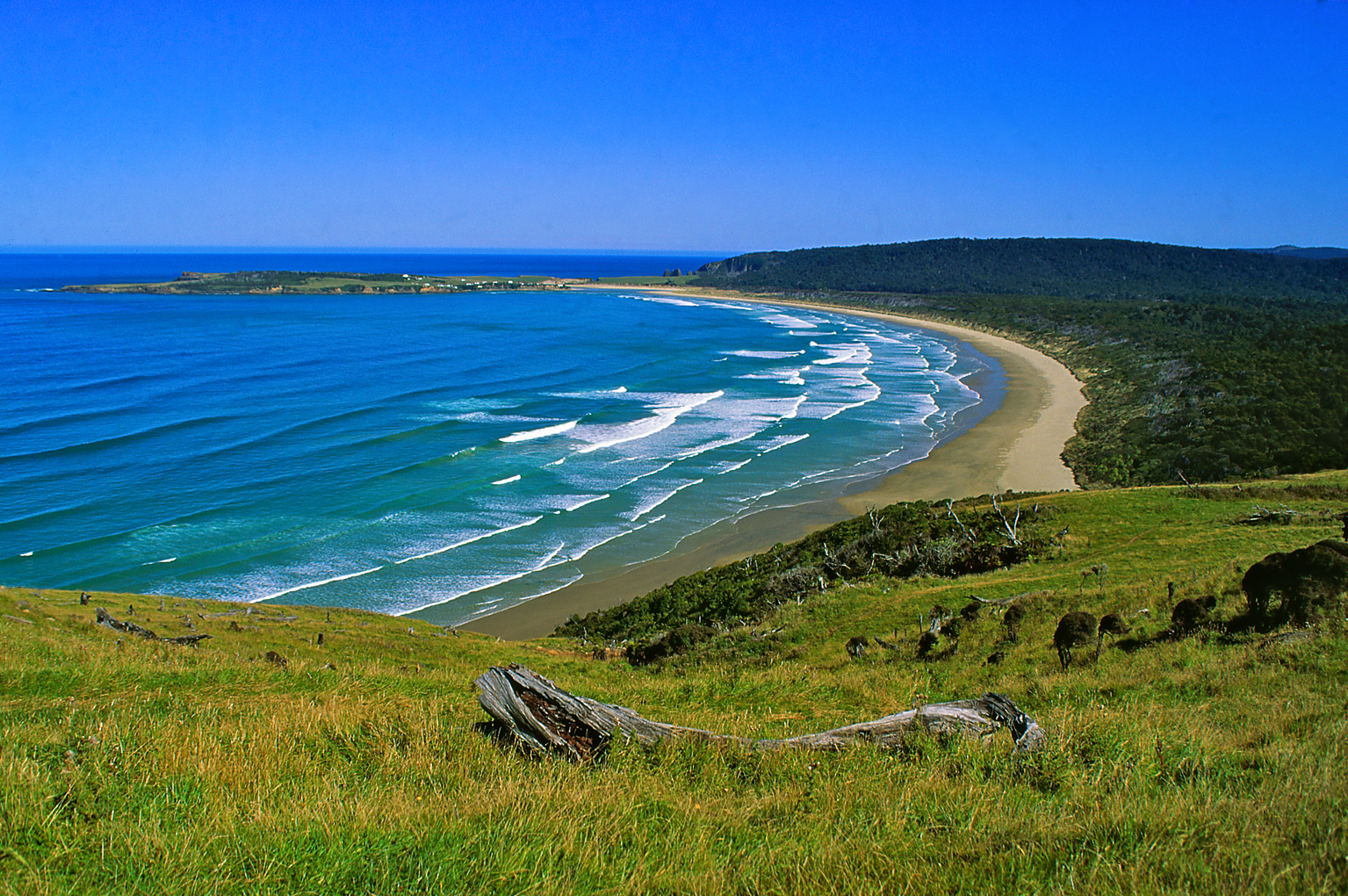 The Catlins New Zealand  city photo : Photoprint for Sale: Tautuku Bay, Catlins, New Zealand