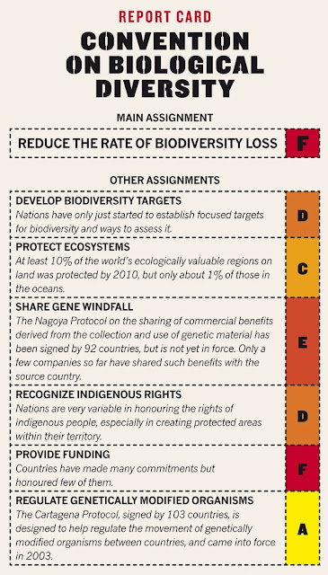convention on biological diversity, rio, rio+20, report card