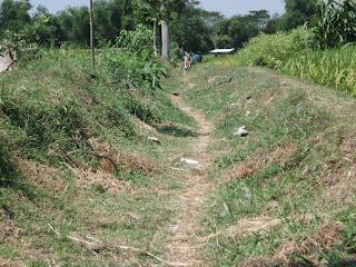 saluran irigasi pertanian