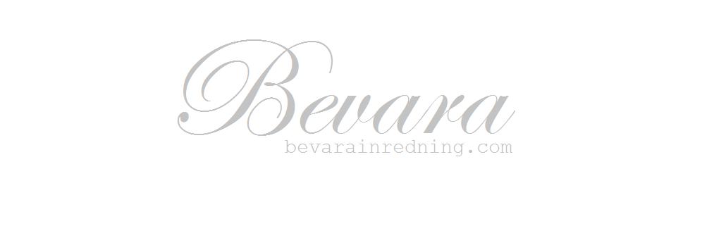 Bevara Bloggen