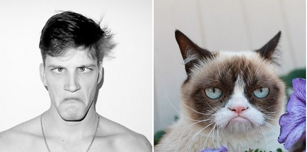 Cats That Look Like Male Models