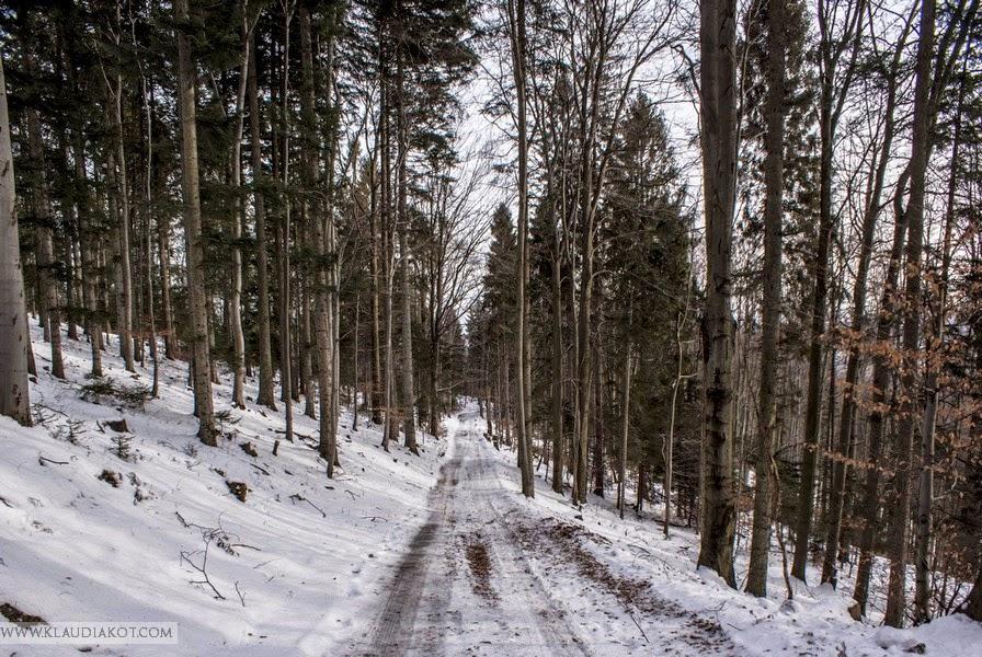 Zima w drodze na Leskowiec