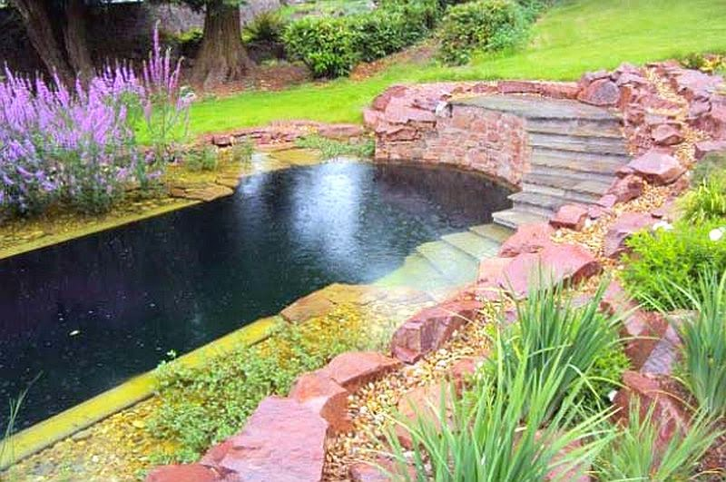 garden with natural swimming pools ideas