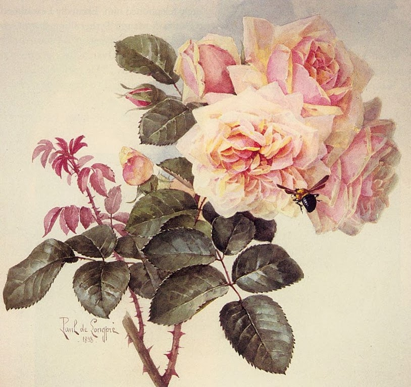 pintura-acuarelas-flores