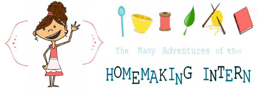 The Many Adventures of the Homemaking Intern