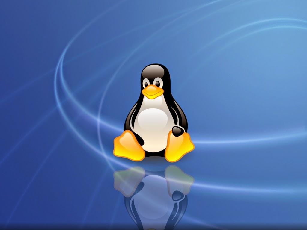 www.softwarelivre.com.br